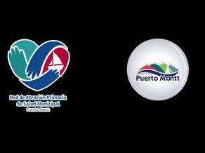 Puerto Montt y Valdivia inician trabajo en conjunto en materias de Salud Municipal