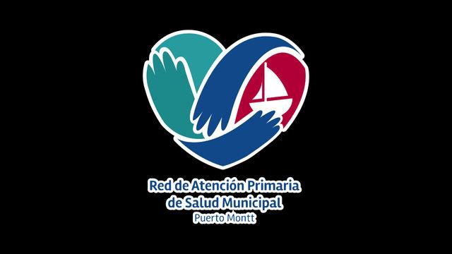 Directivos de Atención Primaria de Osorno valoran buenas prácticas de la Red APS de Puerto Montt