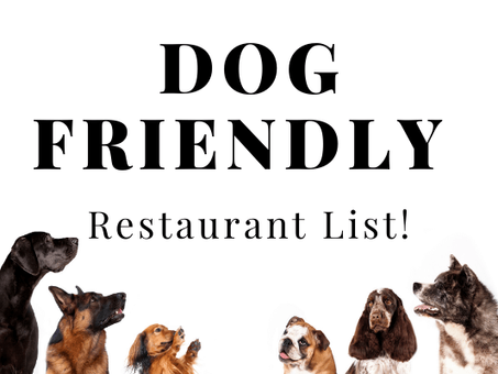Dog Friendly Restaurants Near Me in Brevard County including Melbourne and Cocoa Beach!