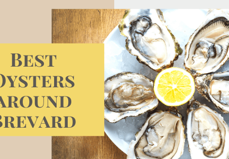 Best Oysters Near Me: Brevard and the Space Coast
