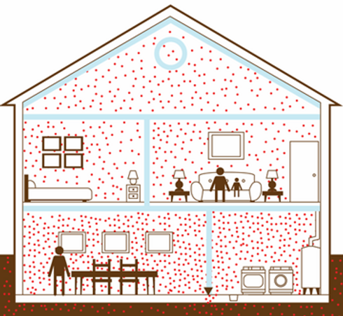 Picture_Radon Home.png