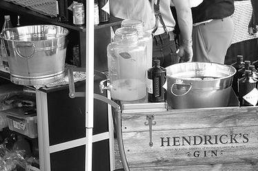 gin-1754713_1920.jpg