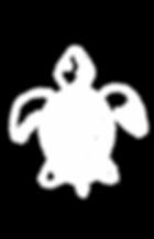 adobe-spark-post_edited.png