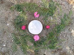 APU LUZ PLATE + FLOWERS.jpg