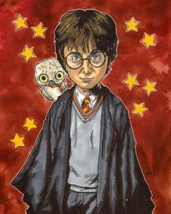 Harry Potter.jpg