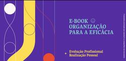 Organização para a Eficácia