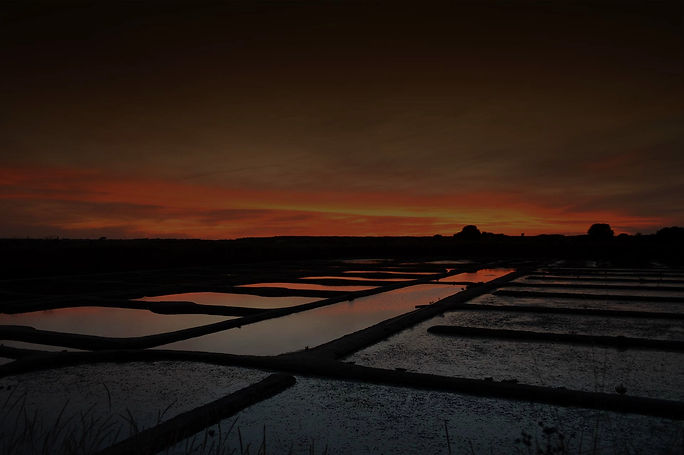 Coucher de soleil au marais_medium