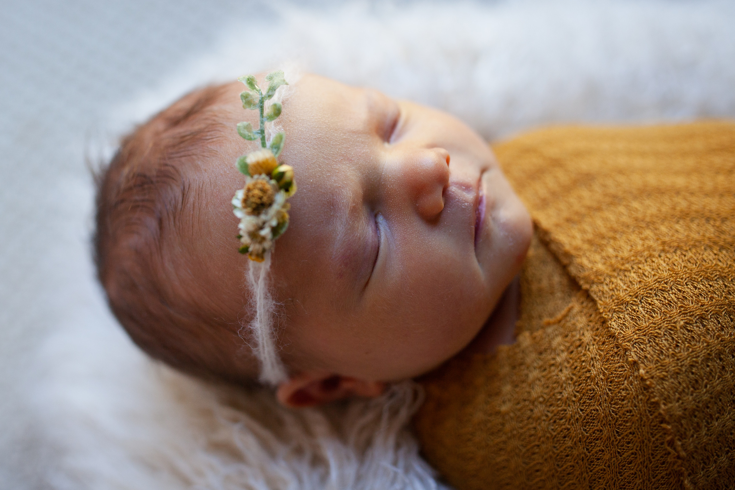 Posed In-Home Newborn Photograph of sleeping baby with swaddle and headband