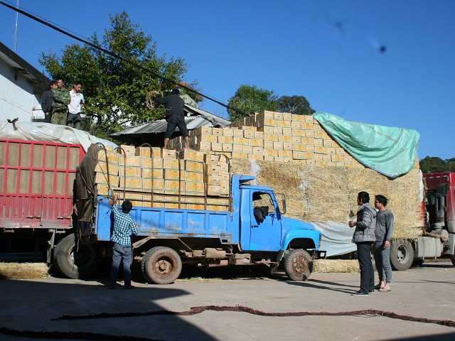 China's freight sector needs a green overhaul. Photo by Kaj17 / Flickr