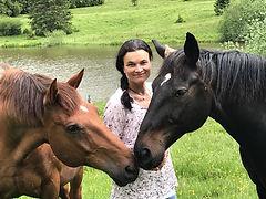 Pferde und ich.jpg