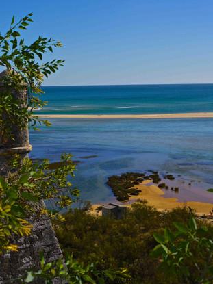 Beach Local.jpg