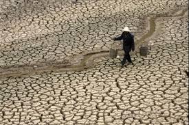 Riflessioni sull'emergenza idrica internazionale (di Andrea Cori)