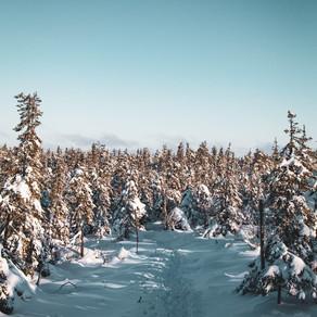 Talvilenkkeilyyn kannattaa hankkia oikeat varusteet