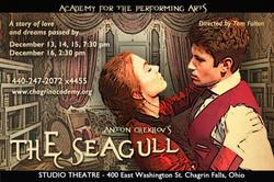 Seagull Postcard Trigorin Irina