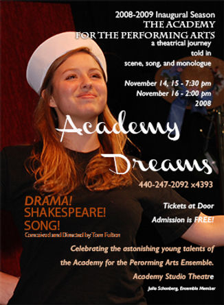 web art Academy Dreams Poster 2008.jpg