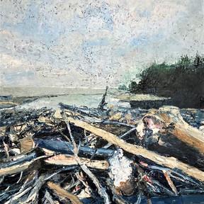 Lake Erie Driftwood