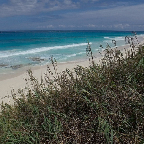 Abacos Bahamas Beachfront Resort