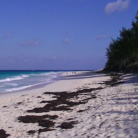Abacos Island Bahamas Vacation Rental