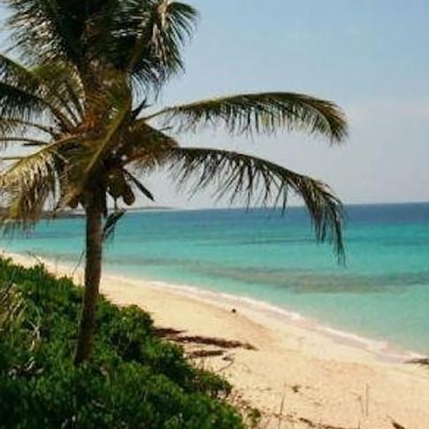 Cabin Rental in Abacos Bahamas