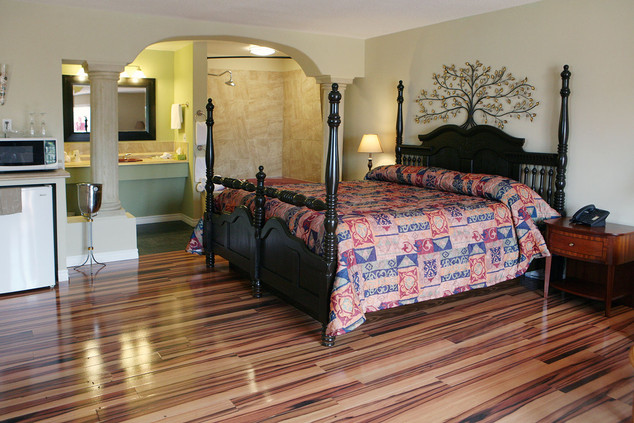 Spacious Room with Four-Poster Queen Bed