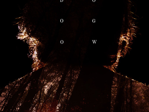 Dogwood Film Review