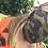 Thumbnail: Beard mask- fitted