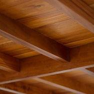 disinfestazione tarlo del legno