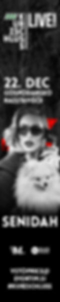KS_IX_2019_SENIDAH_banner_120x600.jpg