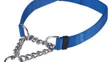 5 Tips for Loose Leash Dog Walking
