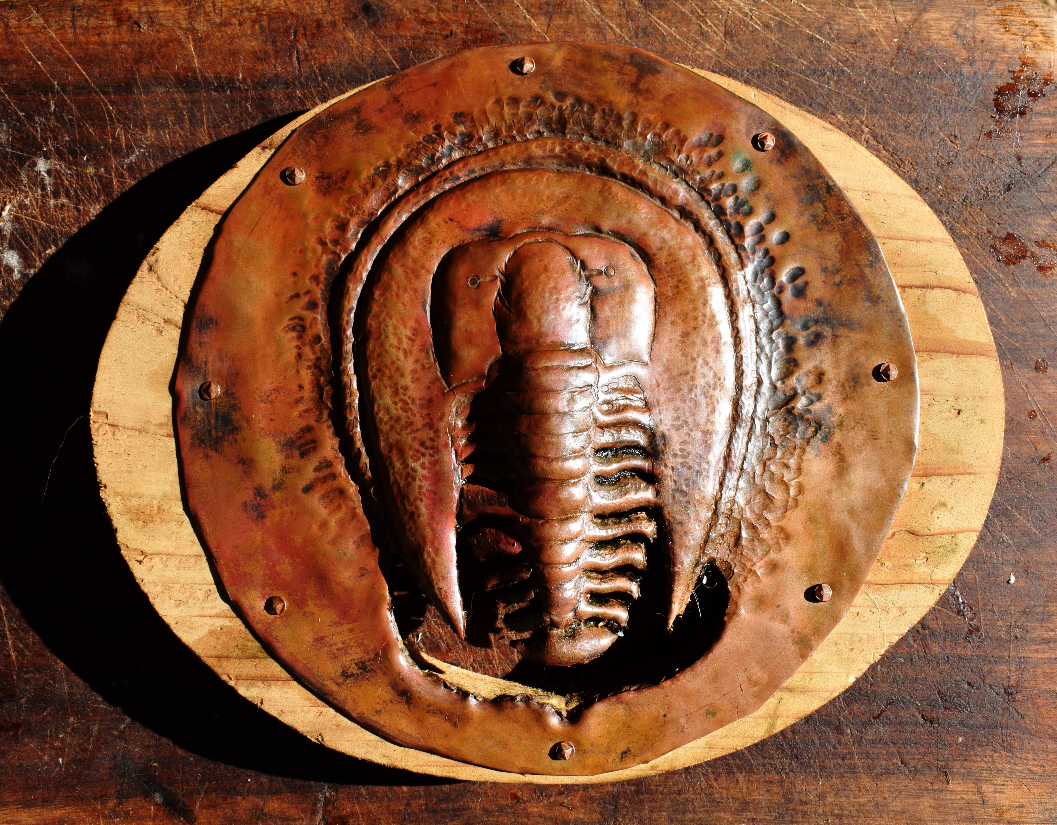 copper trilobite vent fan cover...
