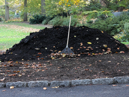 Micro-Sustainability brings composters out of the weeds