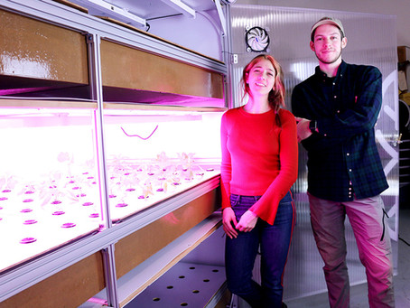 InventOR alum Nexgarden receives seed funding for its indoor farming business