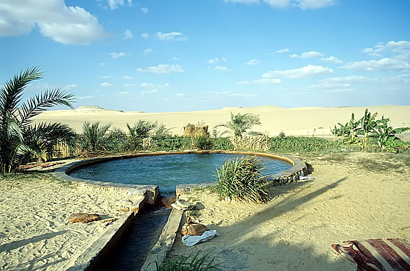 Bir Wahed in Siwa Oasis