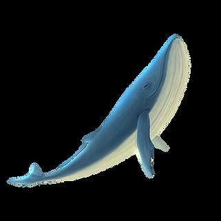 —Pngtree—ocean_park_underwater_world