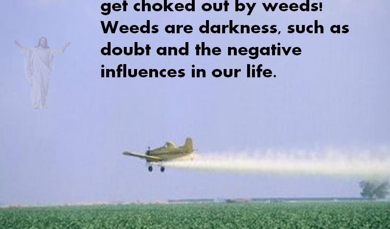 Spraying plane w Scripture.jpg