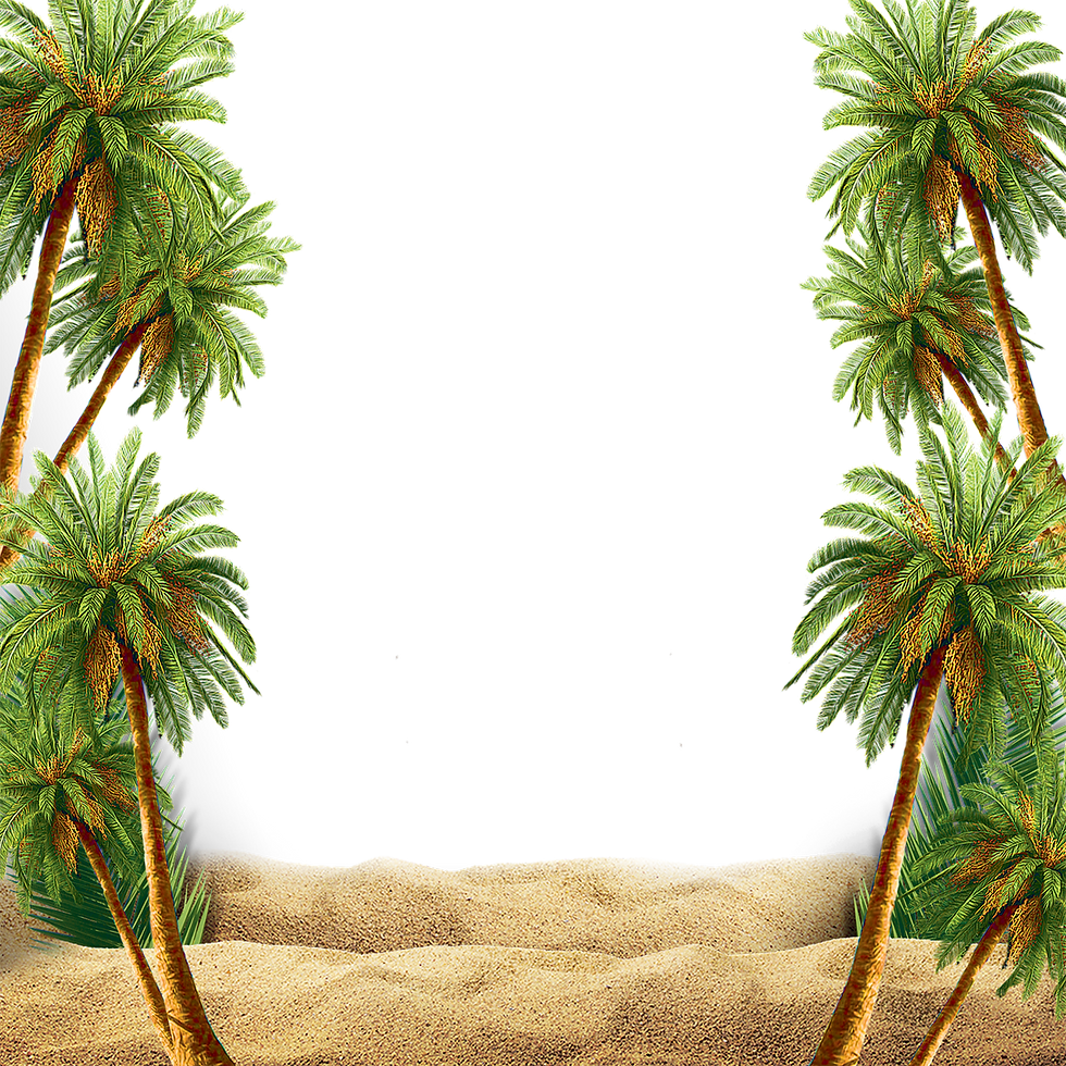 —Pngtree—scene with palm tree_3556289.pn