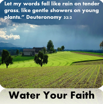 Water Your Faith.png