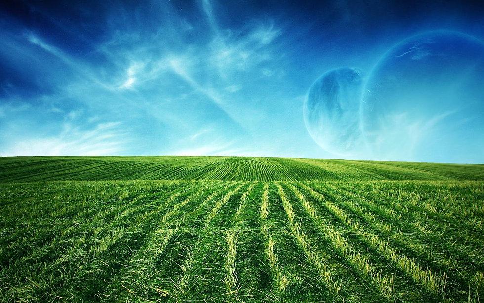 1 green-field-animated-widescreen-background-uploads-beach-wallpapers.jpg