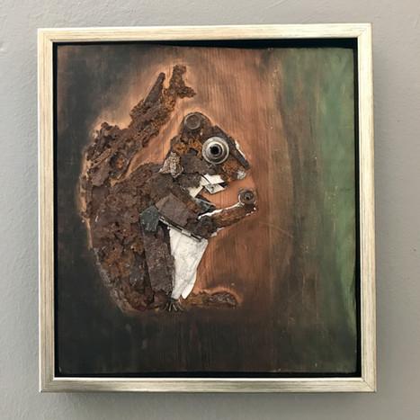 Rust Pine Squirrel