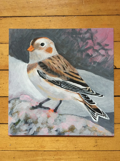 FoSZB Snow Bunting - donated to fundraiser