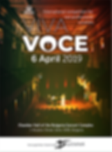 Poster _announce for FB _vivavoce 2019.p