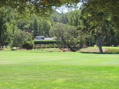 Cash is King in Marin Country Club