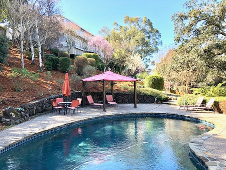 Coming Soon! 5bd/4ba With Pool and In-Law Unit in Pleasant Valley, Novato