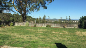 Just Sold For 10% More Than List Price in Loma Verde