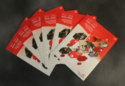 CECH Annual Report