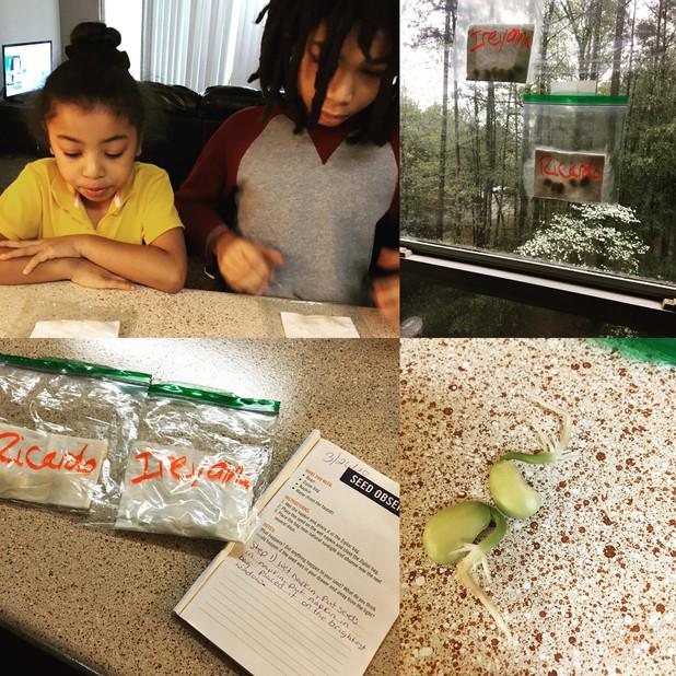 CIS of Atlanta Team Providing Curriculum Support to Students During Quarantine