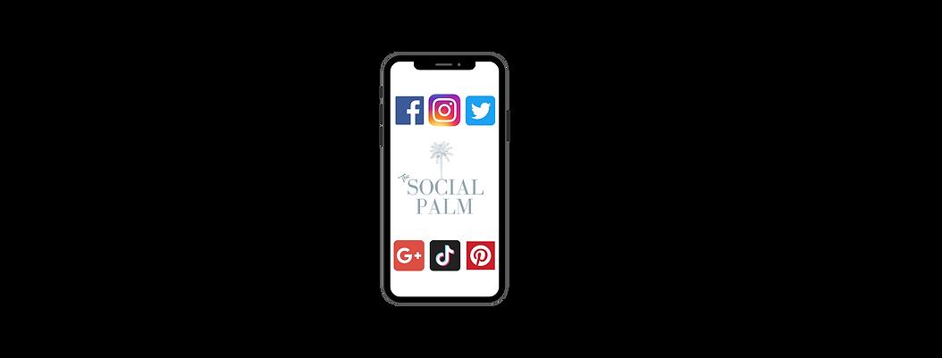 Social Palm Social Media Marketing Graph