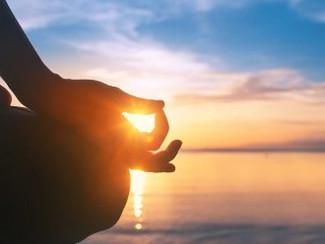 分子栄養学的 「食べる瞑想」