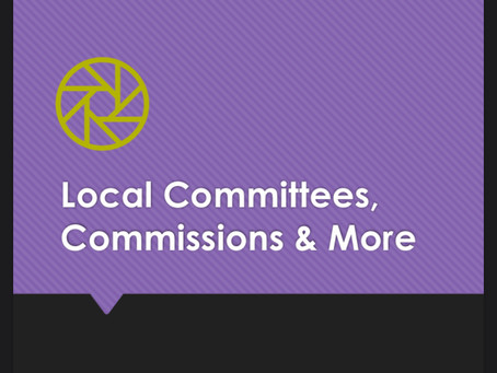 More Local Government & Community Engagement: Committees, Commissions & More