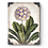 Thumbnail: First Bloom Sid Dickens Memory Tile